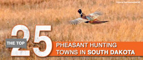 Hoven Listed as one of top 25 towns to pheasant hunt in