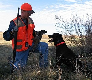 Unguided/Self-Guided Land Access Pheasant Hunts